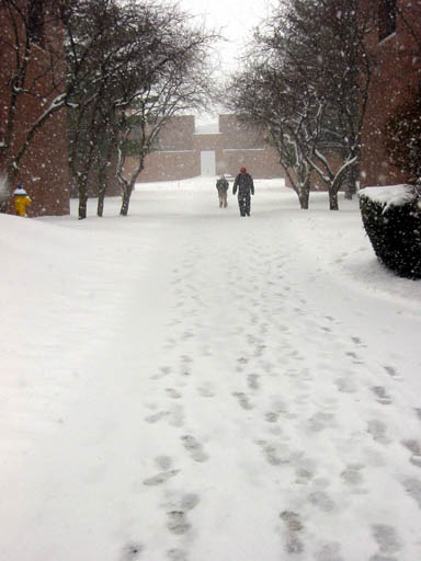 View from NRH down quad during Winter 2004